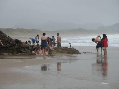 Hotwater Beach, Coramandel, New Zealannd