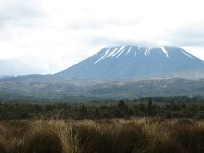 Mt Tongariro from Desert Road, New Zealand