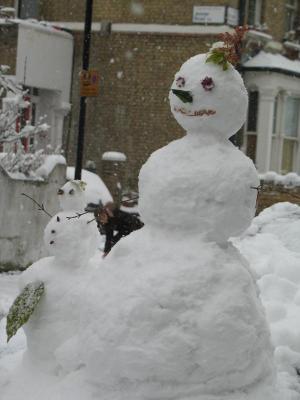 Snow folk