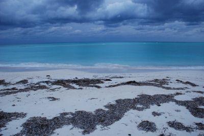 Beach, Cayo Levisa