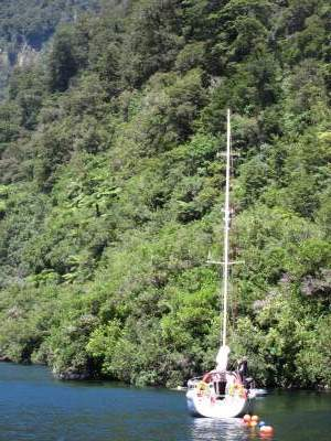 Boat on Doubtful Sound