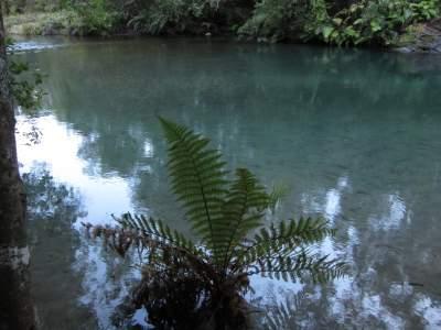 Tararewa River