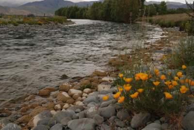 River Twizel