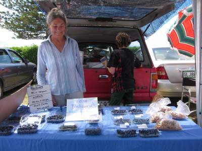 Blueberry Stall