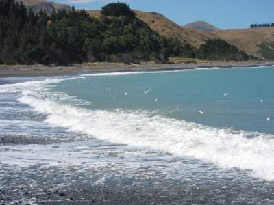 Kekerengu Beach