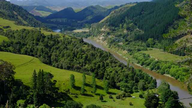 Whanganui River and valley, hills and trees