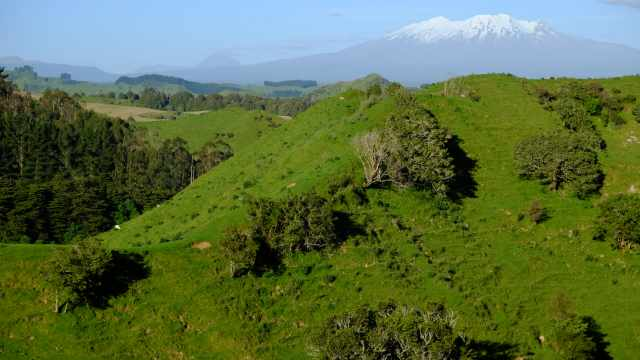 Grren hills with Mount Ruahepu