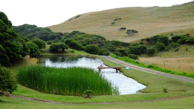Pond at Ruapuke Motor Camp, Raglan